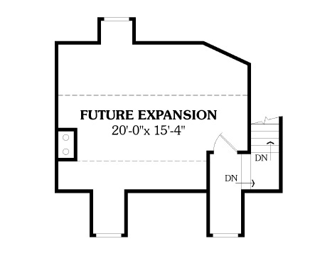 Bonus Space by DFD House Plans